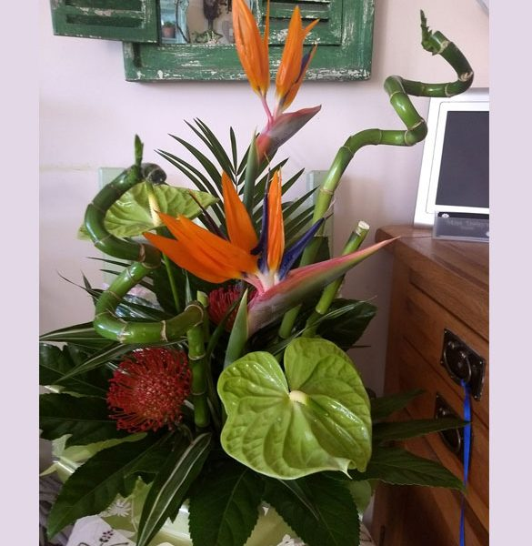 Strelitzia, Bamboo and Anthurium Arrangment